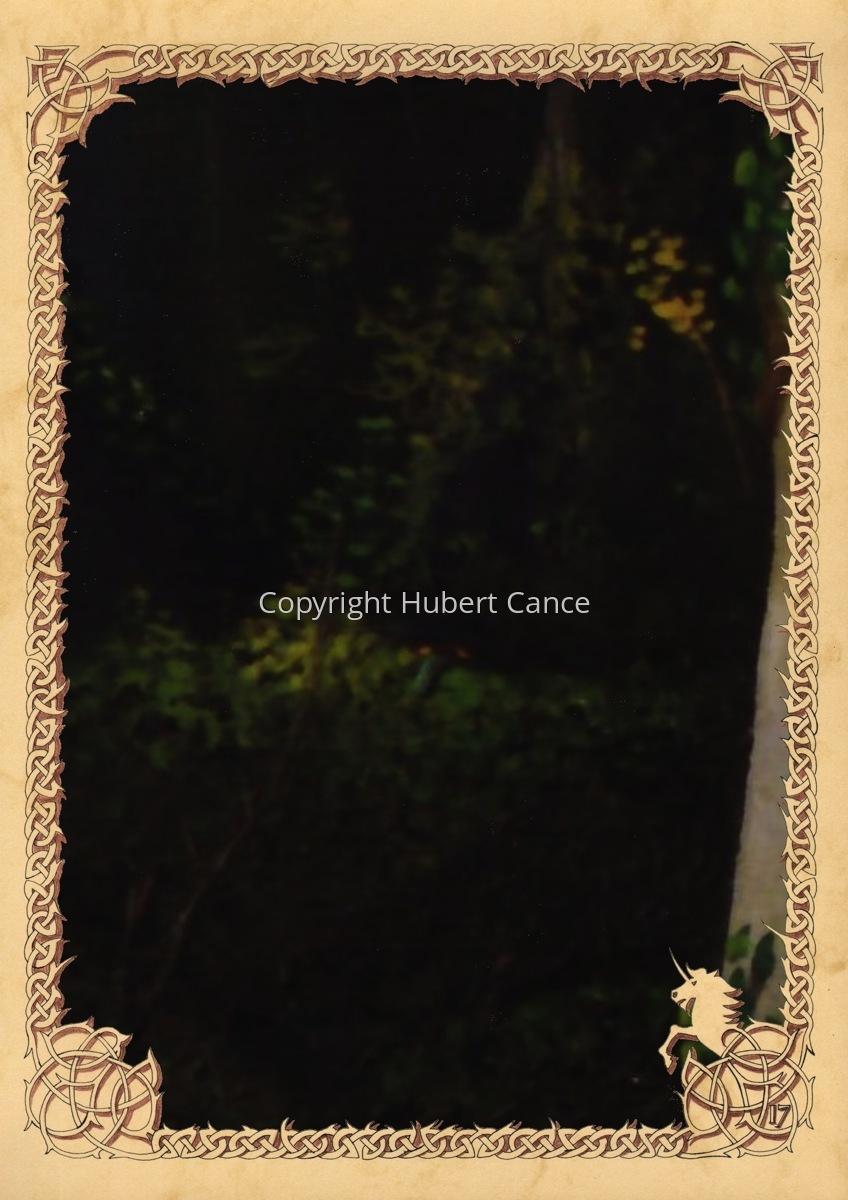 Moosses: Branchees (Prequel) (Hidden creatures #1) (large view)