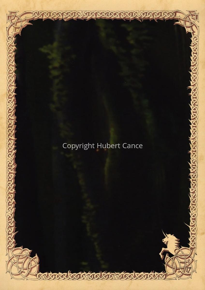 Moosses: Branchees (Prequel) (Hidden creatures #2) (large view)