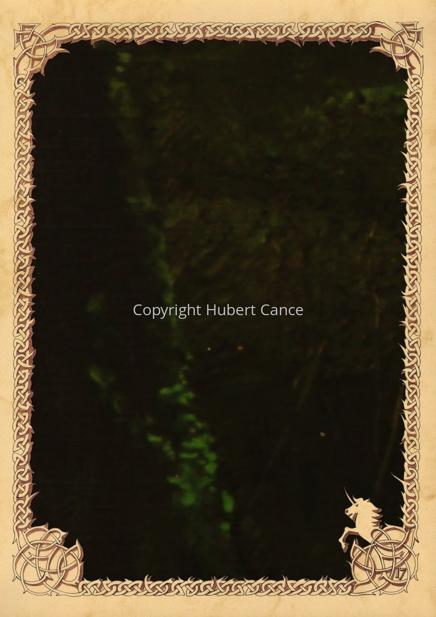 Moosses: Branchees (Prequel) (Hidden creatures #6) (large view)