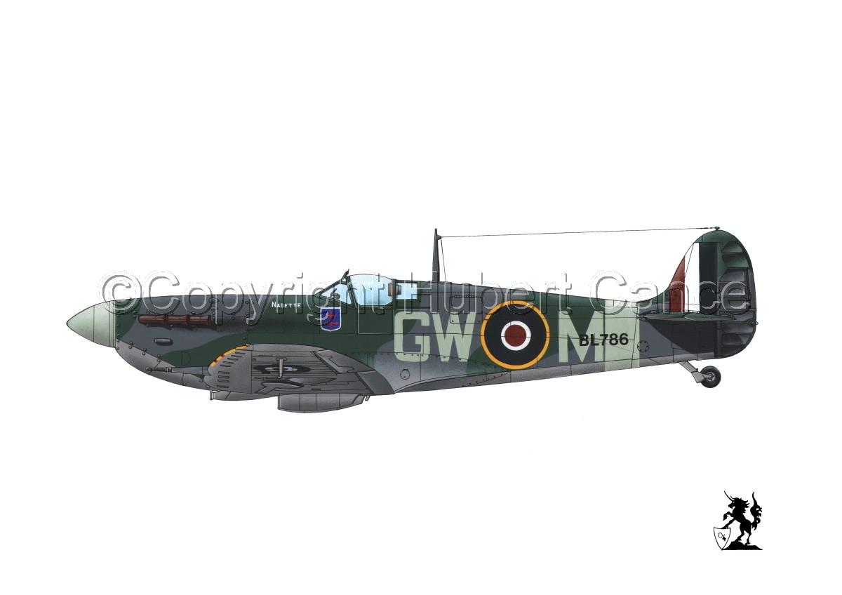 "Supermarine ""Spitfire"" Mk.Vb #1bis.1 (large view)"