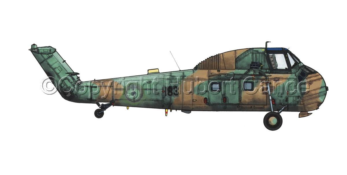 "Sikorsky HSS-1 ""Cameleon"" (large view)"