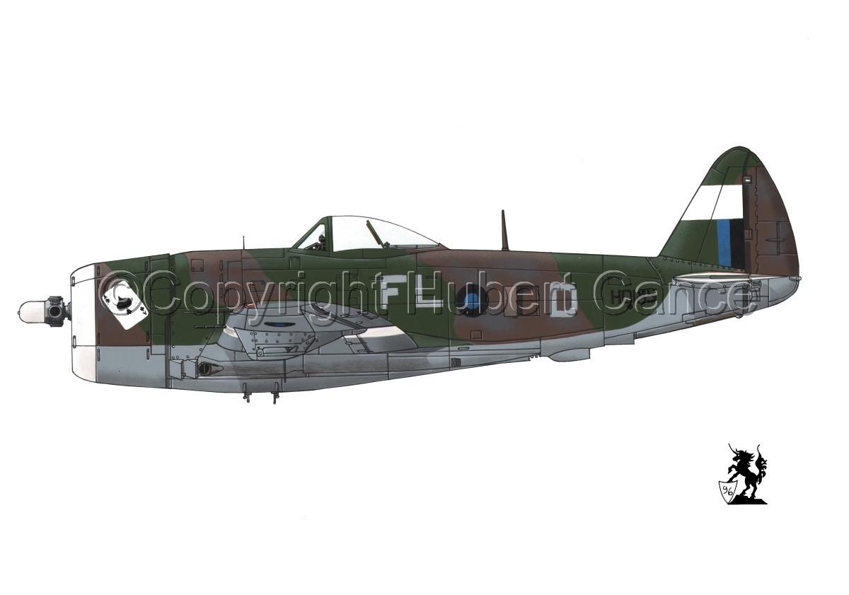 """Republic P-47D-30 """"Thunderbolt"""" #2.1 (large view)"""