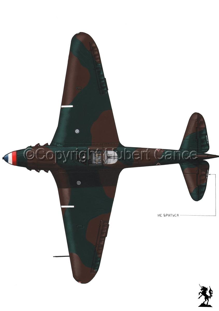 Yakovlev Yak-9D #3.1 (large view)