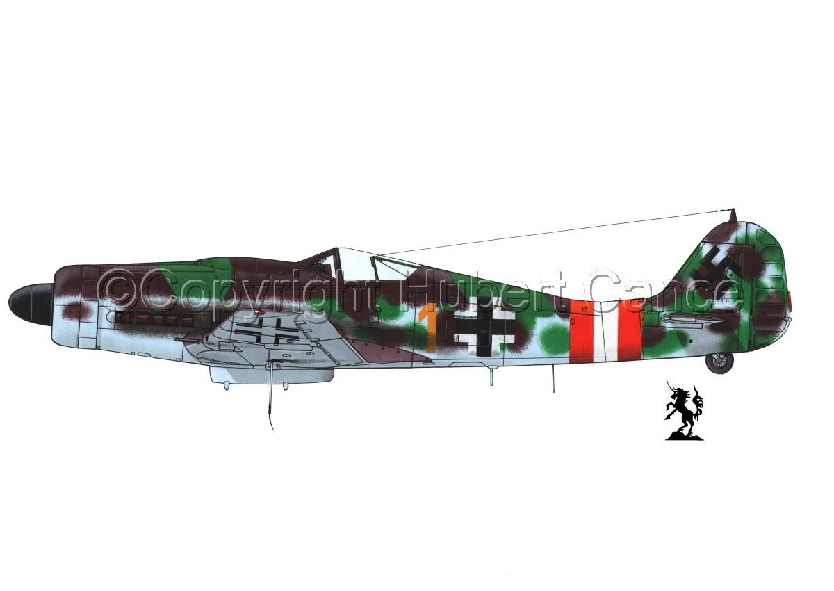 "Focke-Wulf Fw 190D-9 ""Dora"" #1.1 (large view)"