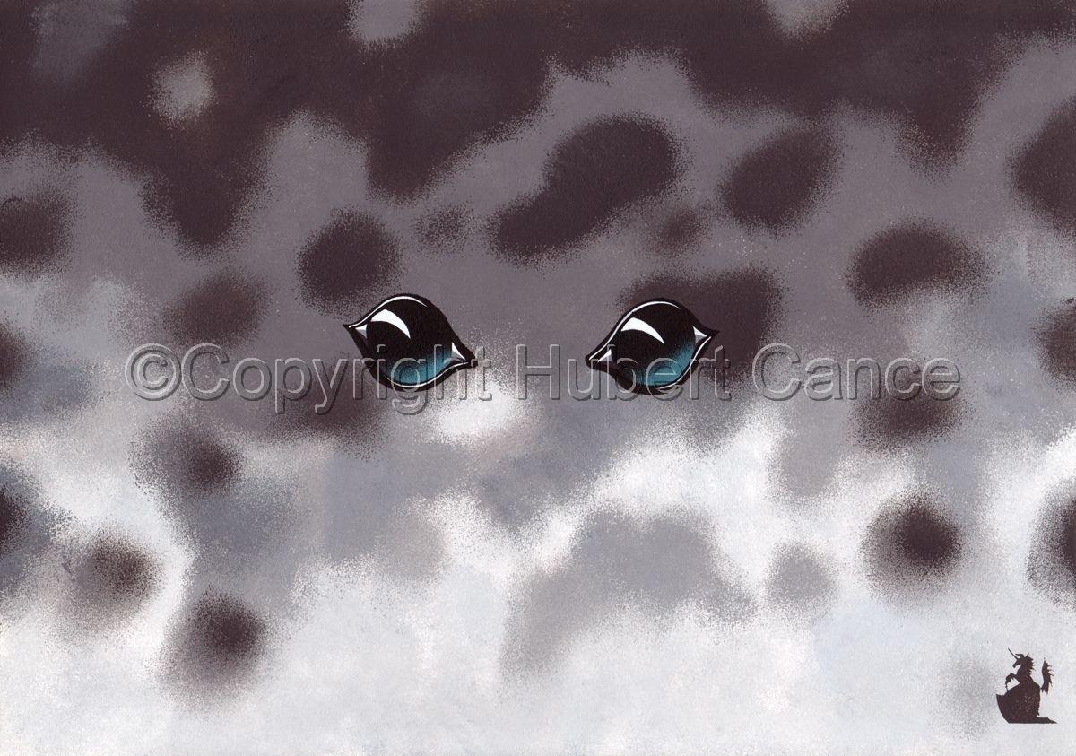 """Grey Seal"" (large view)"