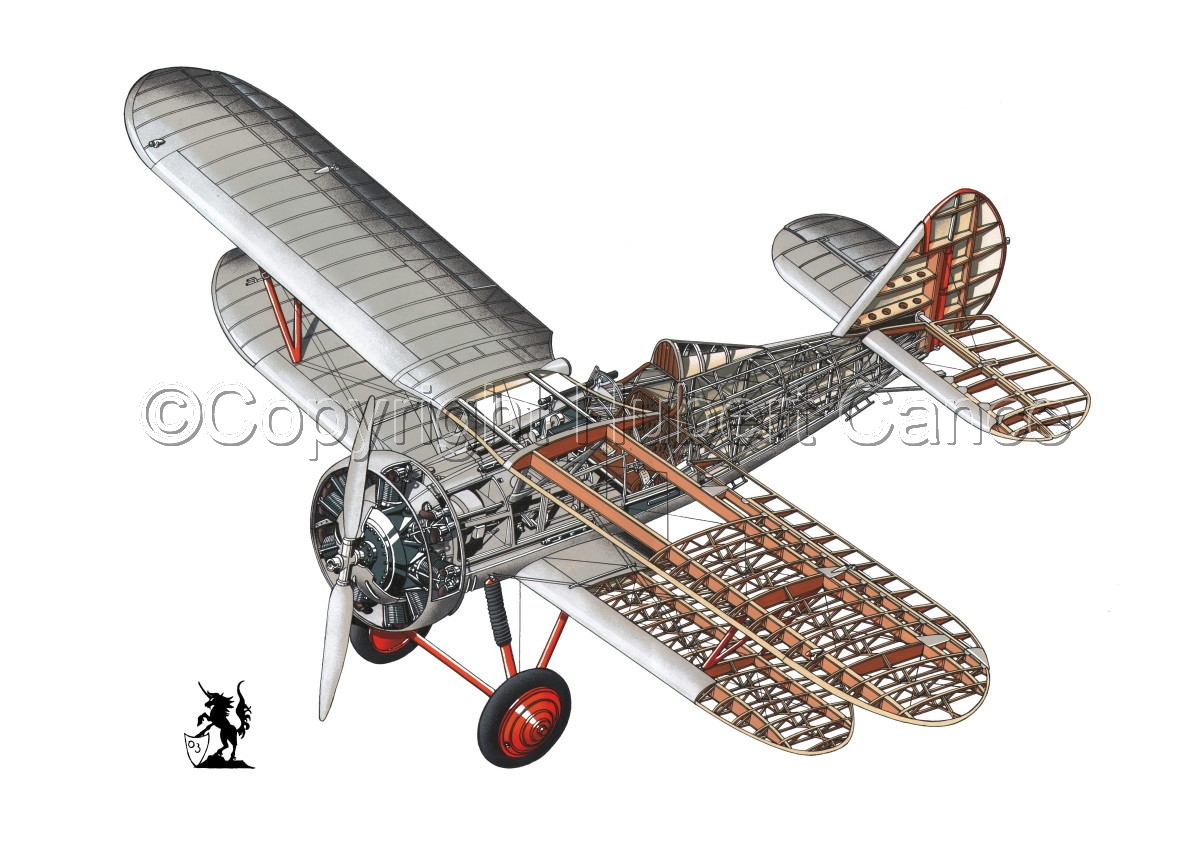 Polikarpov I.5 #1 (large view)