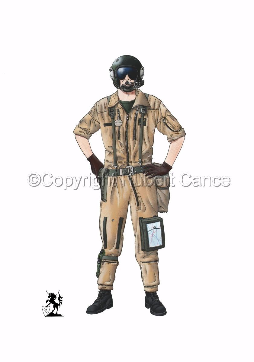 French ALAT Pilot (Gulf War 1) (large view)