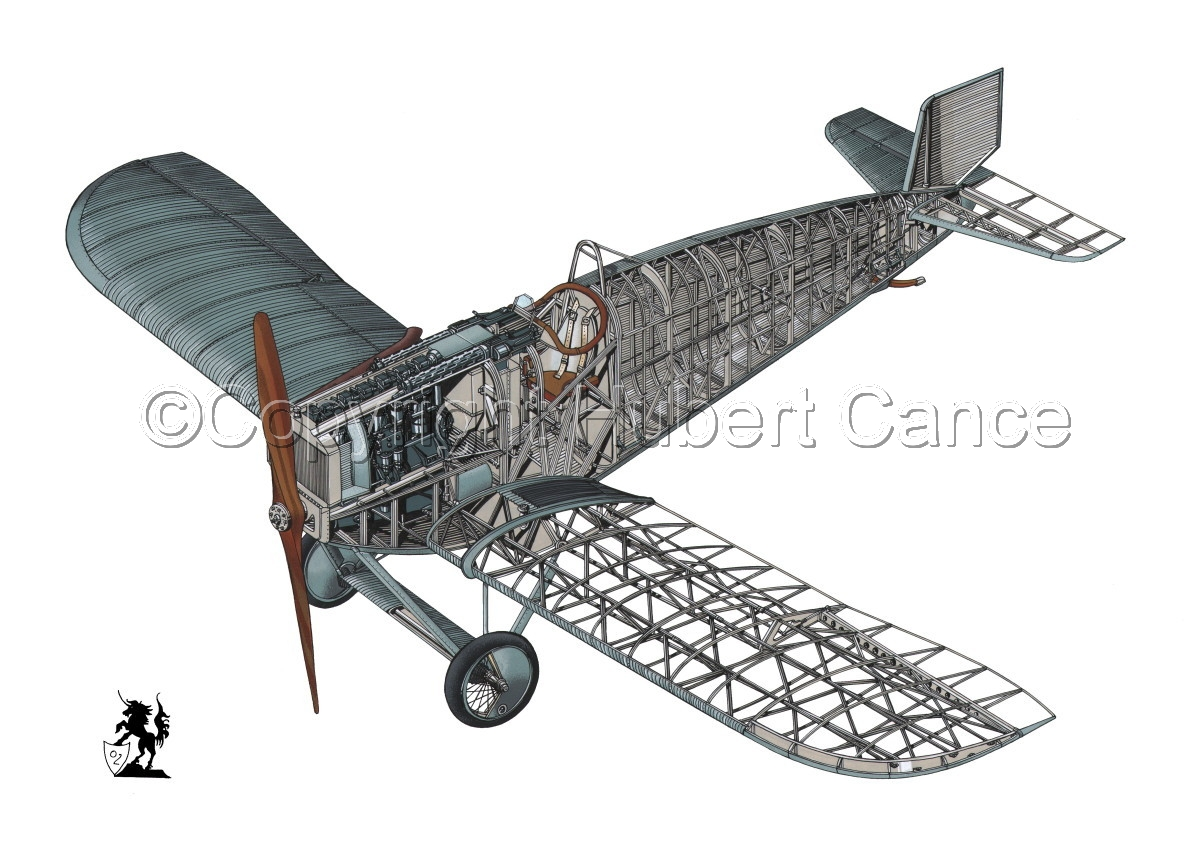 Junkers D.1 #1 (large view)