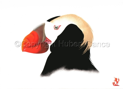 """""""Tufted Puffin"""" (large view)"""