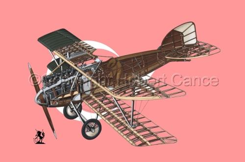 Albatros D.III (Flag #6) (large view)