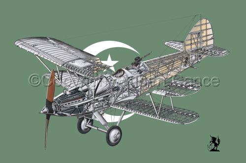 "Hawker ""Hart"" (Flag  #9) (large view)"