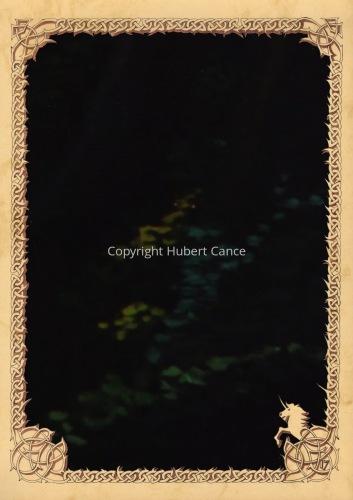 Moosses: Branchees (Prequel) (Hidden creatures #5) (large view)