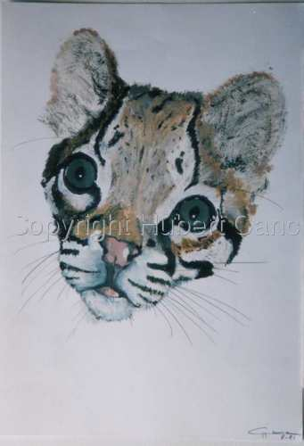 """Ocelot"" (large view)"