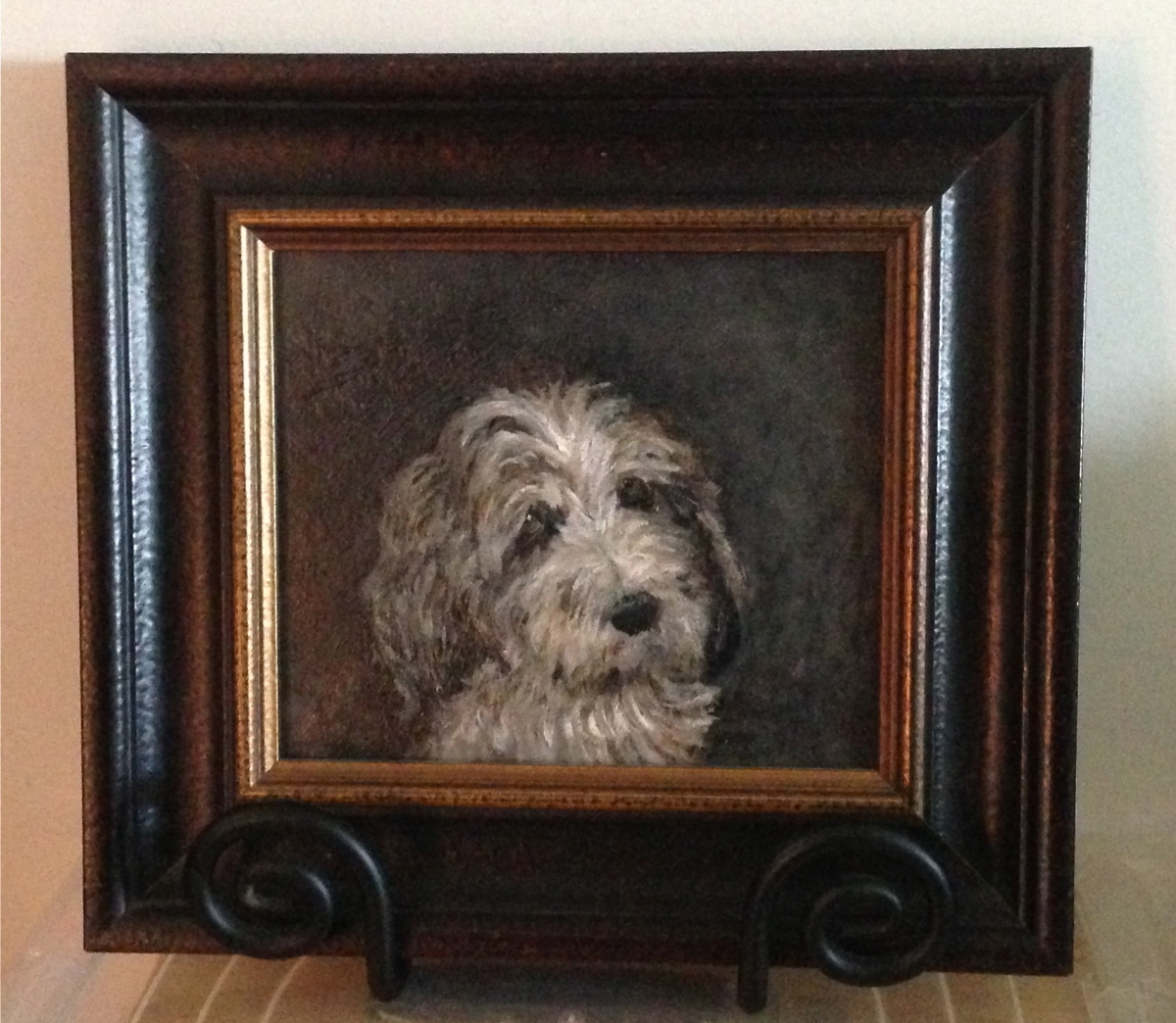 Portrait of a French Basset Hound, framed  (PBGV) (large view)