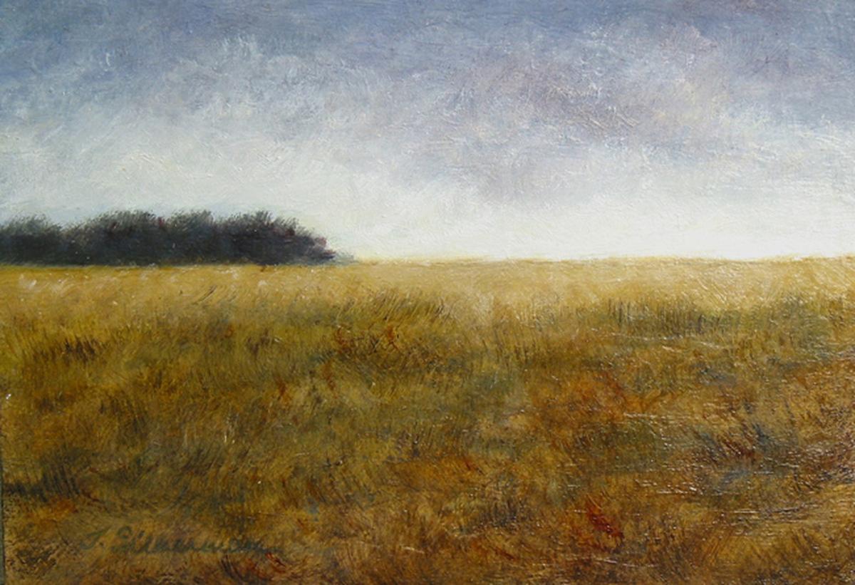 Gentle Fields, unframed   (large view)