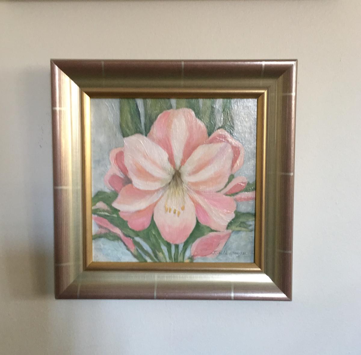 Amaryllis, framed  (large view)