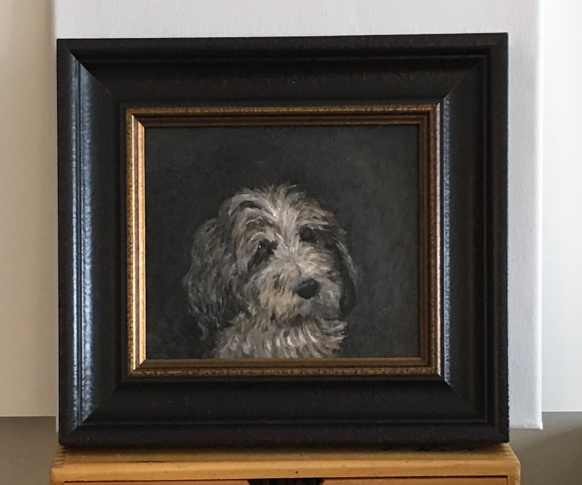Portrait of a French Basset Hound  (large view)