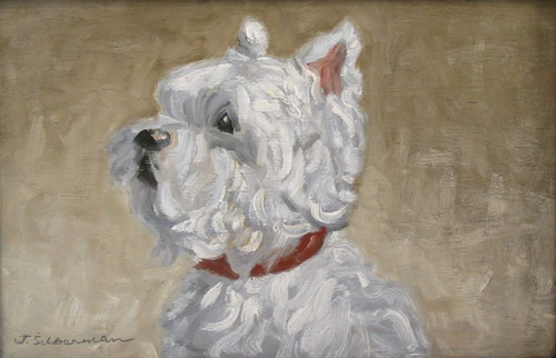 White Scottish Terrier,  Portrait   (large view)