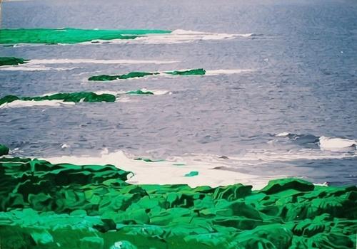 Purple Sea, Flaned Head, Ireland (large view)