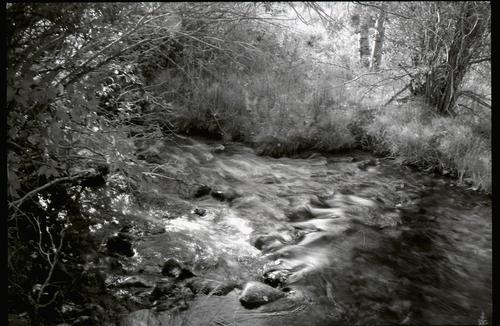 Tumbling Stream