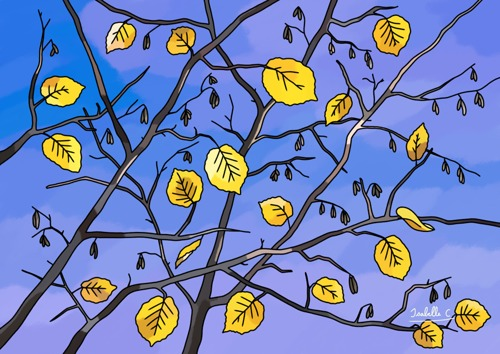 Yellow Leaves on the Sky