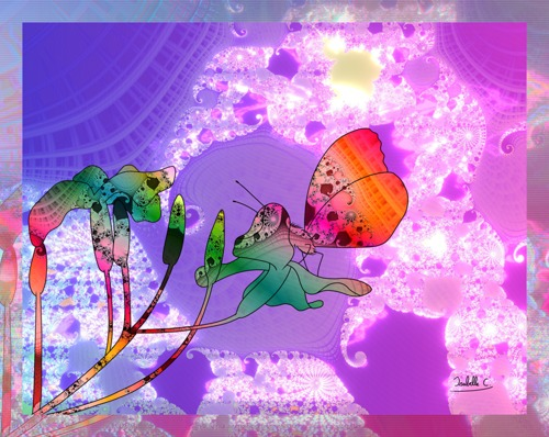 Dimension Butterfly and Flowers, print edition