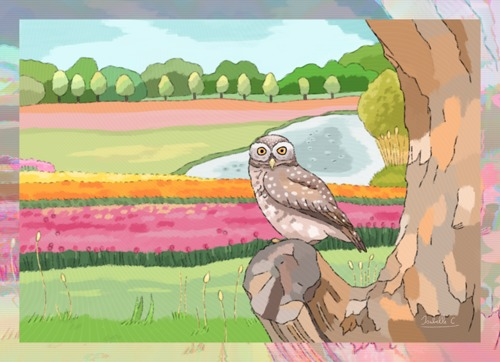 An Owlet on a Tree in a Landscape with Tulip Fields and a Pond, print edition