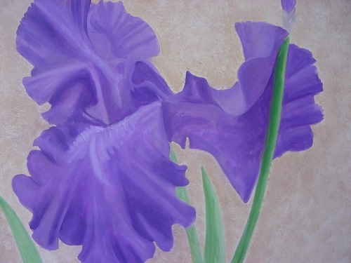 Great Iris