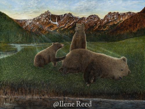 Wake up Mom ... Hungry as a Bear by ilene reed