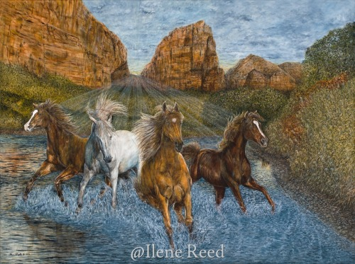 Horse Play by ilene reed
