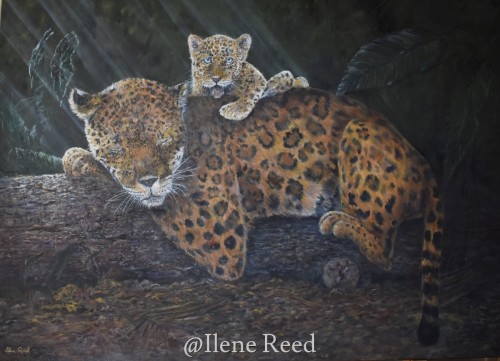 View From The Top by ilene reed