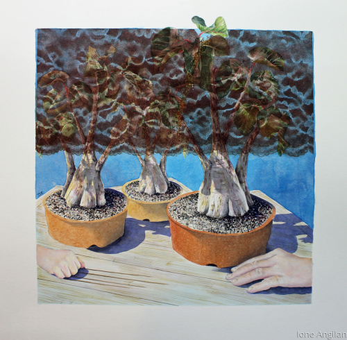 Bonsai Tray Landscape #5