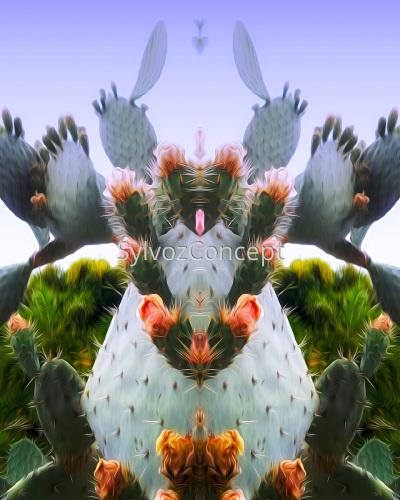 """Prickly Pear Cactus"""
