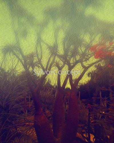 """Cactus Tree"""