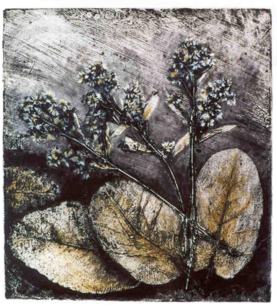 Jackie Zagon Monotype, collagraph,mixed media,  B&W with transparent oil paint washes  of gold and white.  Large leaves and small flowers were applied to a diagnally textured handmade printing plate.Thin gold metal frame, gold mat. (large view)