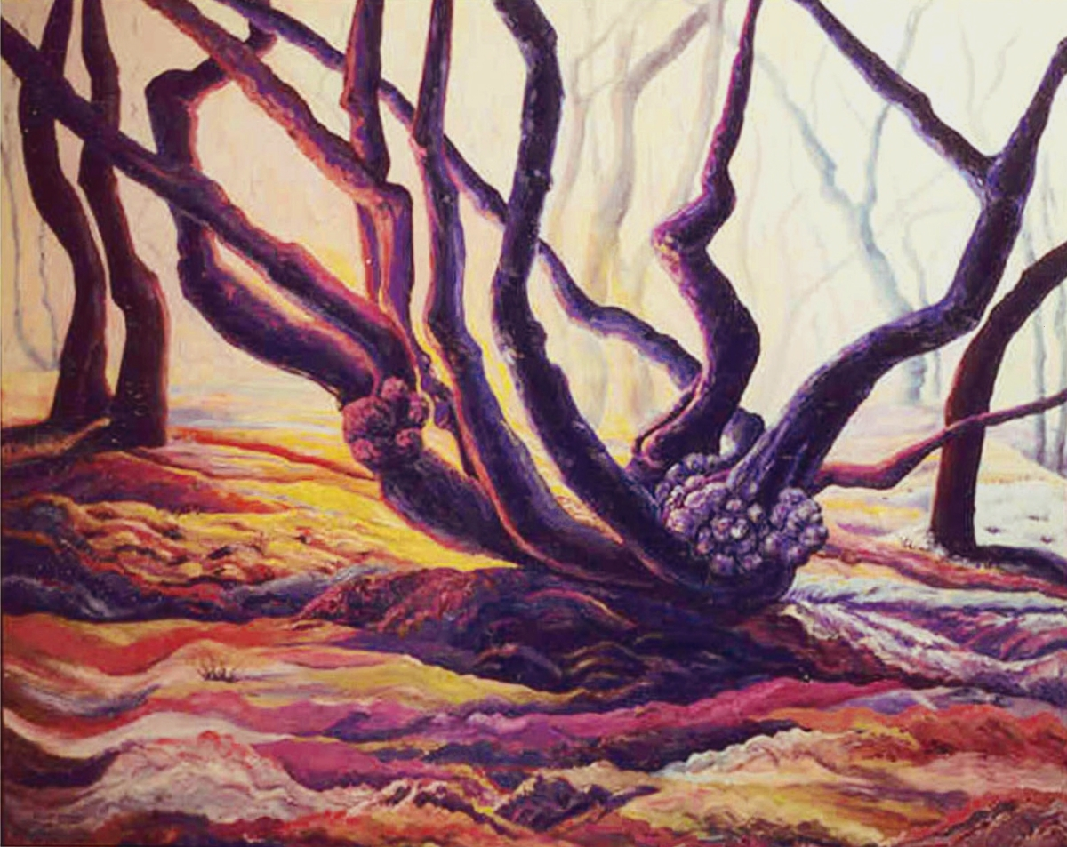 Jackie Zagon, Oil on canvas, landscape.  Large, startlingly beautiful image about time, season, light & color in an  expressive impressionist style.  The winter sun is setting behind mature gnarly trees. Fog had suddenly rolled  in.  Colors: saturated pin (large view)