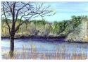 Jackie Zagon, Watercolor, timeless, landscape, pristine, unspoiled, late winter lakeview. Small birds in water. Bare branched tree in foreground. Opposite shoreline shows both evergreen and deciduous trees and shrubs. Colors: blues, greens, yellows, eart (thumbnail)