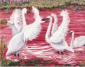 "Jackie Zagon, Acrylic on canvas, wildlife. Two male, Whistling Swans stand in shallow water at sunset. With wings outspread, they face off for the attention of the female, as other wildlife look on. Colors: reds, pinks, white, yellows. Frame: 3"" wood, an (thumbnail)"