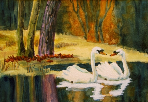Jackie Zagon, Watercolor, lakeside, romantic, autumn sunset, a pair of mute swans glide through still, mirror-like water. Colors: orange, purples, yellows, neutrals, white.  Frame: thin gold. Mat: double: inner white, outer black. (large view)