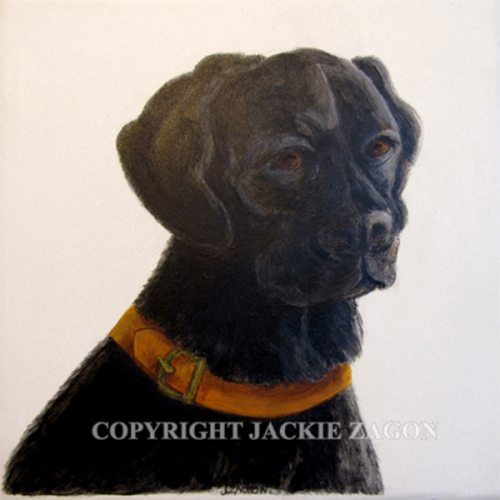 "acrylic on ceramic tile, 6 x 6"", commission, done from photo supplied by dog owner. dog portrait, pet portrait, commission,black Labrador mix (large view)"