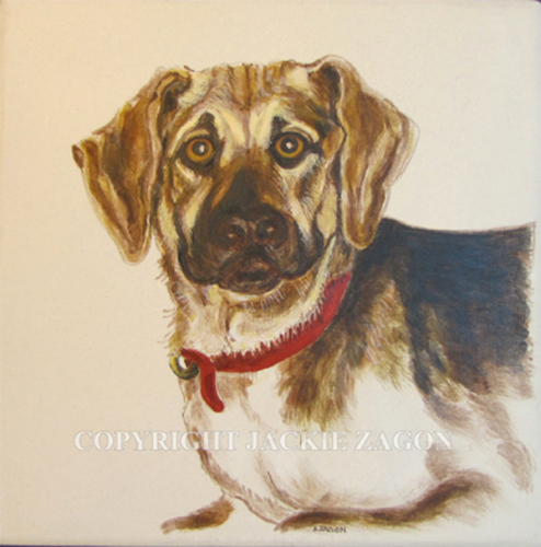 dog portrait, pet portrait, acrylic on ceramic  tile, commission done from photo supplied by dog owner. (large view)
