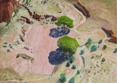 Two-Tree Field, Canyon de Chelly by Jai S. Cochran