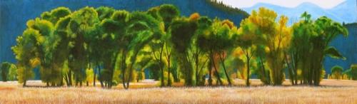 Cottonwood Rhythms (large view)