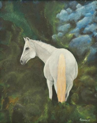 The Shagya Arabian by James Goodkin
