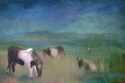 Ponies of Assateague Isle