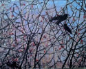 Birds in Brush (thumbnail)