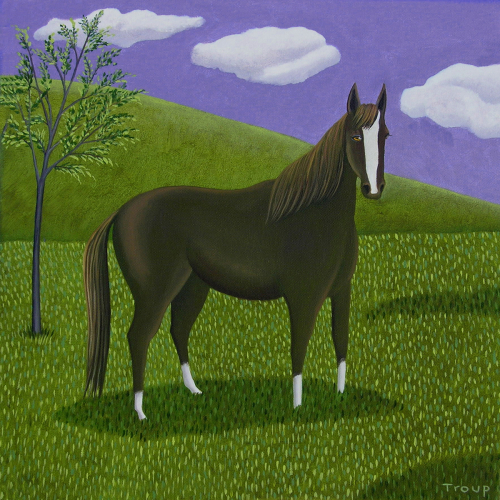 BLACK HORSE by JANE TROUP