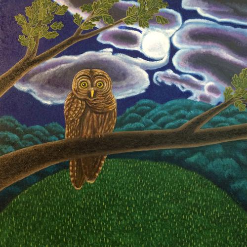 NIGHT OWL (large view)