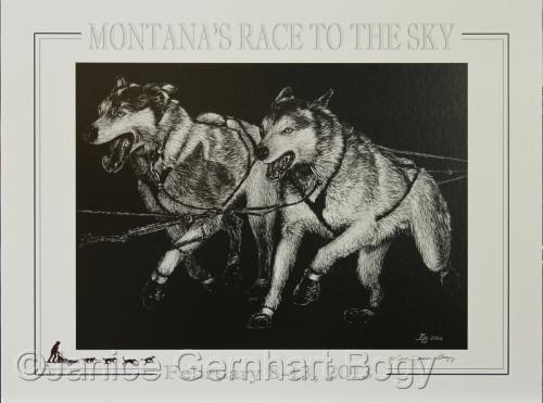 2013 Montana's Race to the Sky