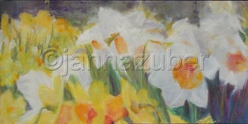 Daffodil Field (Germany)